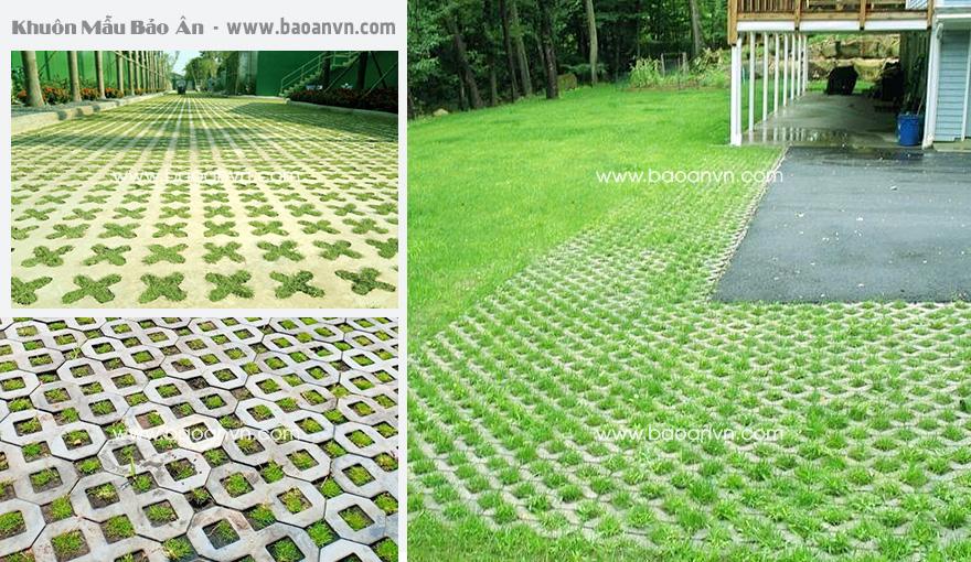 Gạch trồng cỏ sau khi được thi công