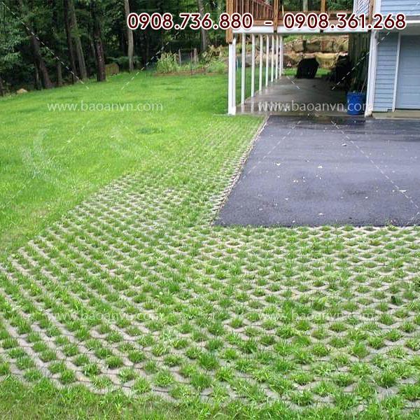 Mã 060 - Khuôn trồng cỏ số 8